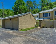 13005 Arborview Place, Tampa image