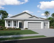 11703 Tetrafin Drive Unit 814, Riverview image