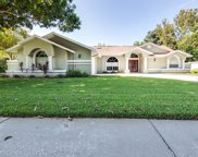 3011 Country Woods Lane, Palm Harbor image