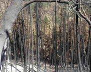 Middle Creek Road, Klamath River image