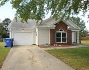 12106 Sawtry  Court, Pineville image