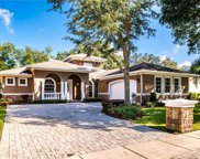 2103 Branch Hill Street, Tampa image