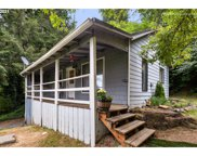 27510 NW TIMBER  RD, Forest Grove image