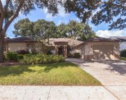 2632 Green Valley Street, Valrico image