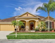 7030 Derwent Glen Circle, Land O' Lakes image