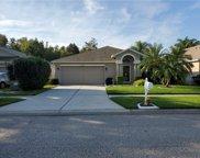 25344 Seven Rivers Circle, Land O' Lakes image