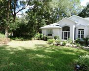 10257 Sw 193rd Ct, Dunnellon image
