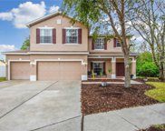 12505 Bay Branch Court, Tampa image