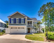37 Natures View Circle, Pawleys Island image