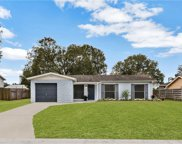 524 Fairhope Drive, Apollo Beach image