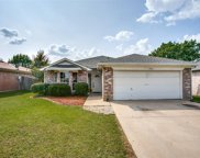 7917 Buttonwood Drive, Fort Worth image