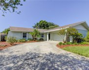 3154 Chamblee Lane, Clearwater image