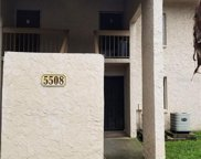 5508 Pokeweed Court Unit 145, Tampa image