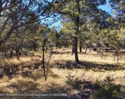209 Alpine Meadows Trail, Ruidoso image