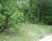 Private Road 6263, Edgar Springs image