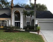 234 Chestnut Ridge Street, Winter Springs image
