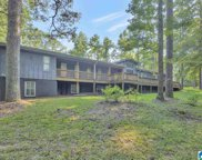 5353 South Shades Crest Road, Bessemer image