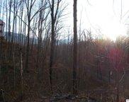 806 Red Fox Trail, Gatlinburg image