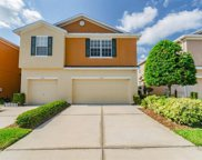 8732 Turnstone Haven Place, Tampa image