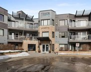 35 Sturgeon Road Unit 313, St. Albert image