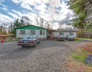 32990 LYNX HOLLOW  RD, Creswell image