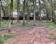 44 W Tallowberry Drive, The Woodlands image