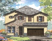 13135 Foxtail Fern Drive, Riverview image