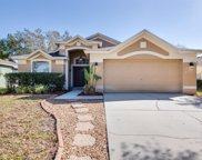 3710 Lonewood Court, Land O' Lakes image