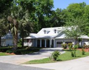 9199 Emily Drive, Fanning Springs image
