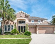 8758 Crystal Creek Court, Land O' Lakes image