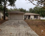 10632 Crescendo Loop, Clermont image