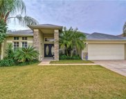 16610 Meadow Grove Street, Tampa image