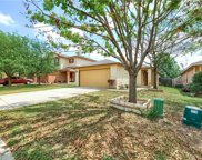 13021 Jelly Palm Trail, Elgin image