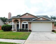 307 Country View Court, Lake Mary image