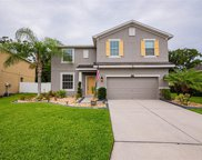 2623 Holly Bluff Court, Plant City image