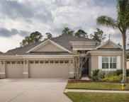 3235 Diamond Falls Circle, Land O' Lakes image