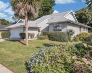1003 Lake Avoca Drive, Tarpon Springs image