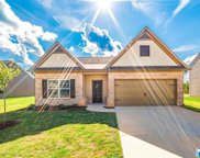 4318 Winchester Hills Dr, Clay image