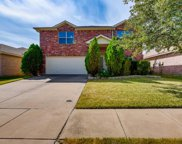 4920 Meadow Trails Drive, Fort Worth image