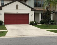 4378 Shrewbury Place, Land O' Lakes image