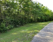 140 Water Oaks Way, Apalachicola image