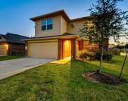 23715 Umbrella Pine Drive, Tomball image