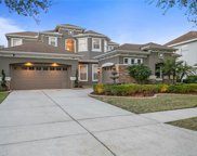 10119 Deercliff Drive, Tampa image