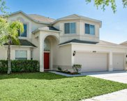 10678 Grand Riviere Drive, Tampa image