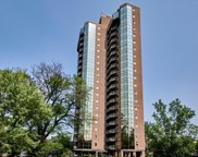 1299 N Gilpin Street Unit 14E, Denver image