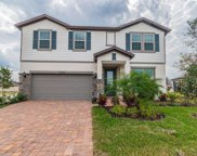 10835 Rolling Moss Rd., Tampa image