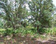 422 Portulaca Drive, Indian Lake Estates image