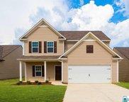 85 Homestead Ln, Springville image