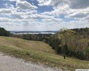 24 County Road 767, Cedar Bluff image