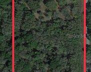 8540 Sw Turkey Trail, Arcadia image